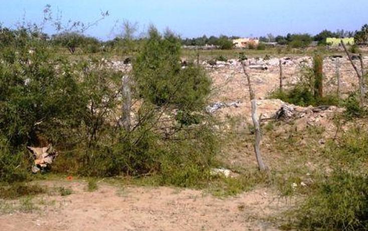 Foto de terreno habitacional en venta en  , california, la paz, baja california sur, 1110525 No. 05