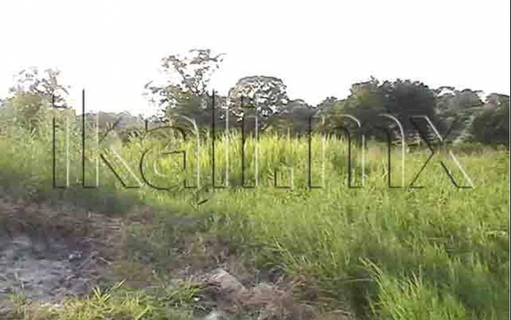 Foto de terreno habitacional en venta en calizto almazan, infonavit las granjas, tuxpan, veracruz, 577966 no 05