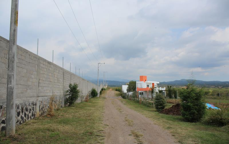 Foto de terreno habitacional en venta en calle buenaventura nonumber, ocuituco, ocuituco, morelos, 1634224 No. 05
