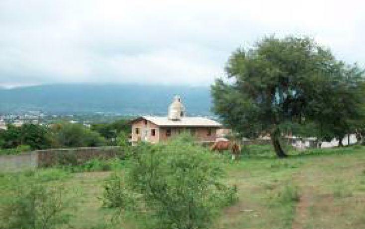 Foto de terreno habitacional en venta en calle hidalgo sn, jocotepec centro, jocotepec, jalisco, 1695258 no 08