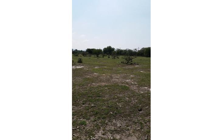 Foto de terreno habitacional en venta en  , apaxco de ocampo, apaxco, méxico, 1707266 No. 08