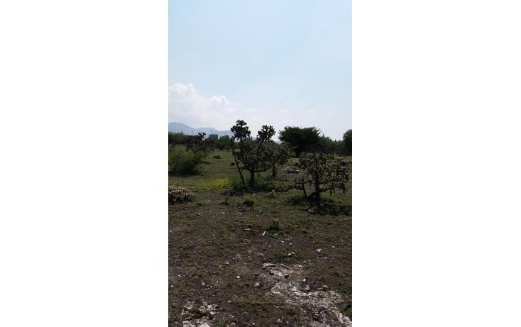 Foto de terreno habitacional en venta en  , apaxco de ocampo, apaxco, méxico, 1707266 No. 11