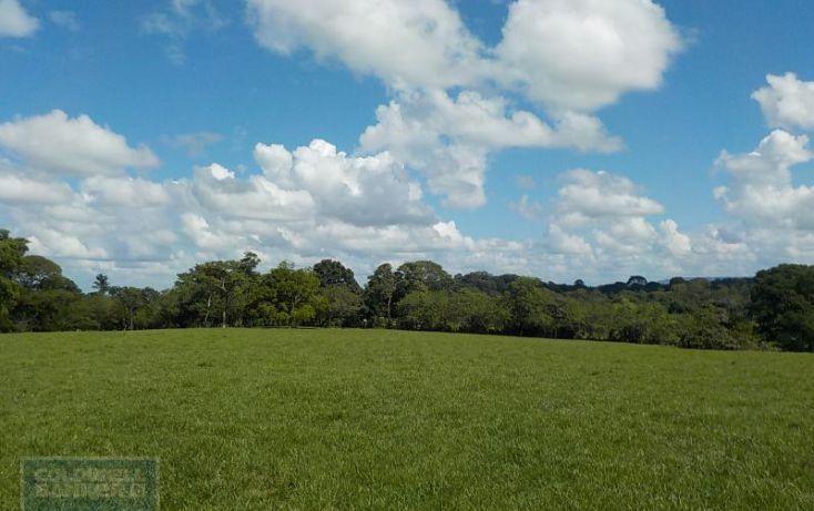 Foto de terreno habitacional en venta en calle palenque, el estribo, palenque, palenque, chiapas, 2035718 no 04