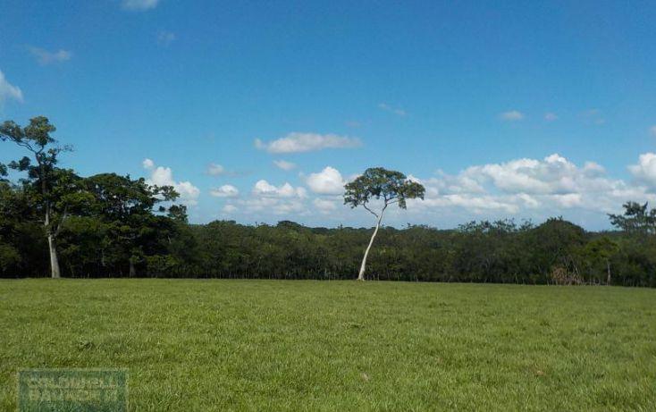 Foto de terreno habitacional en venta en calle palenque, el estribo, palenque, palenque, chiapas, 2035718 no 05