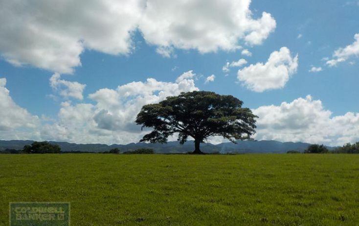 Foto de terreno habitacional en venta en calle palenque, el estribo, palenque, palenque, chiapas, 2035718 no 06
