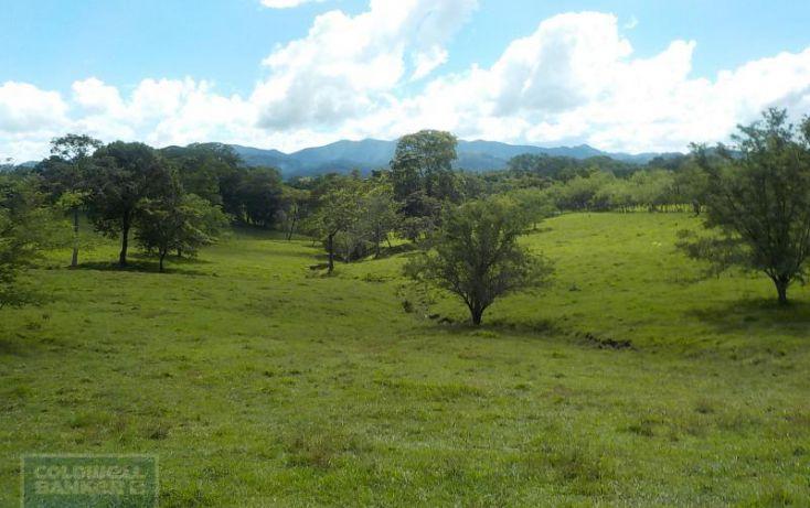 Foto de terreno habitacional en venta en calle palenque, el estribo, palenque, palenque, chiapas, 2035718 no 07