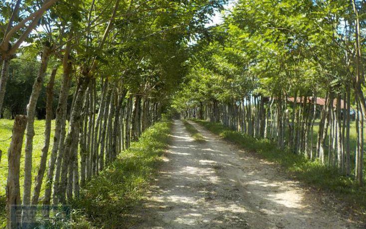 Foto de terreno habitacional en venta en calle palenque, el estribo, palenque, palenque, chiapas, 2035718 no 08