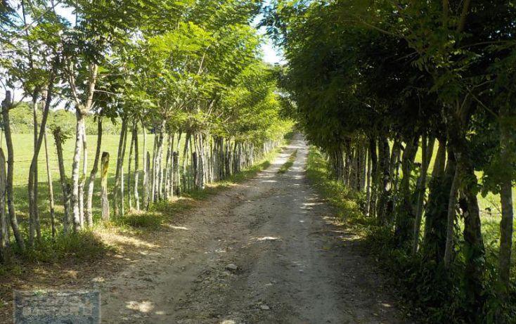 Foto de terreno habitacional en venta en calle palenque, el estribo, palenque, palenque, chiapas, 2035718 no 09