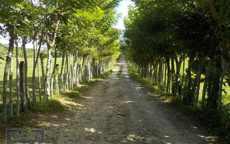 Foto de terreno habitacional en venta en calle palenque, el estribo, palenque, palenque, chiapas, 2035718 no 10