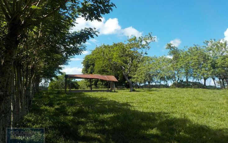 Foto de terreno habitacional en venta en calle palenque, el estribo, palenque, palenque, chiapas, 2035718 no 11