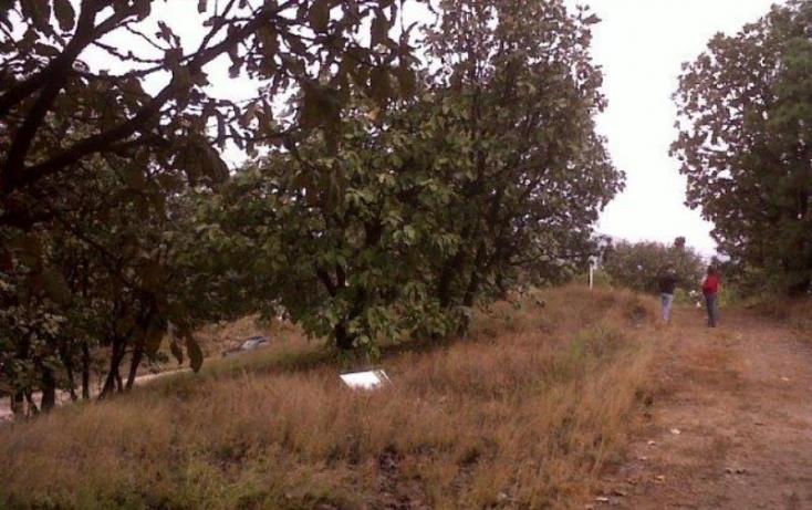 Foto de terreno habitacional en venta en callejón de la llama 27, ciudad bugambilia, zapopan, jalisco, 562465 no 12