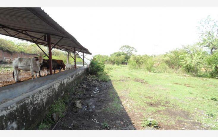 Foto de casa en venta en callejón de las mariposas 3, los ocotes, tepoztlán, morelos, 2026380 no 17