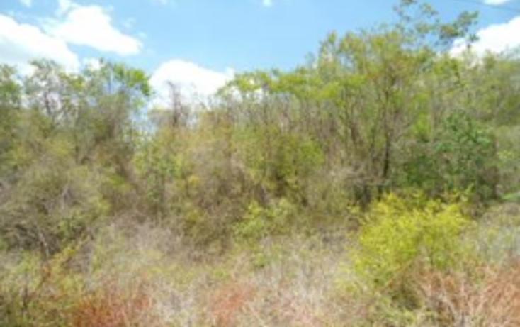 Foto de terreno industrial en venta en  , callejón de tamazula, guasave, sinaloa, 1205647 No. 01