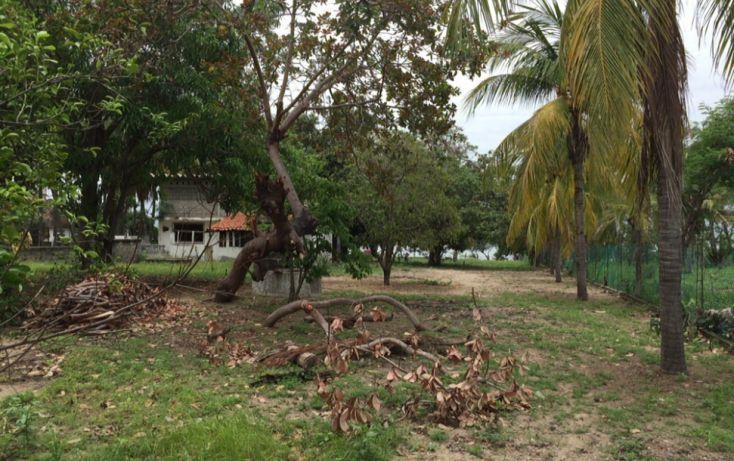 Foto de terreno habitacional en venta en callejón puesta del sol, vicente guerrero, acapulco de juárez, guerrero, 1700724 no 05