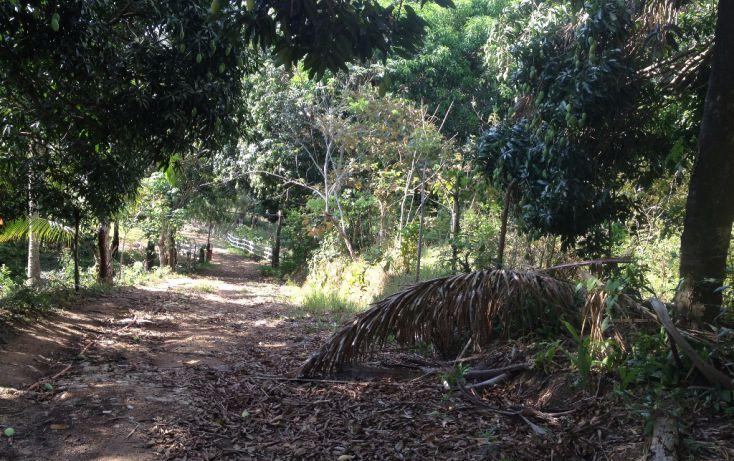 Foto de terreno habitacional en venta en callejon rio colorado manzana 0 lote fl 11, canticas, cosoleacaque, veracruz, 1960390 no 05