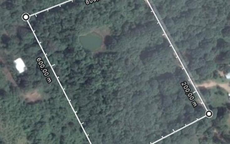 Foto de terreno habitacional en venta en  , canticas, cosoleacaque, veracruz de ignacio de la llave, 1960390 No. 04
