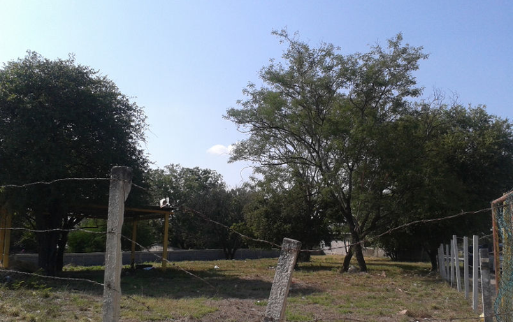 Foto de terreno habitacional en renta en  , calles, montemorelos, nuevo león, 1368955 No. 02