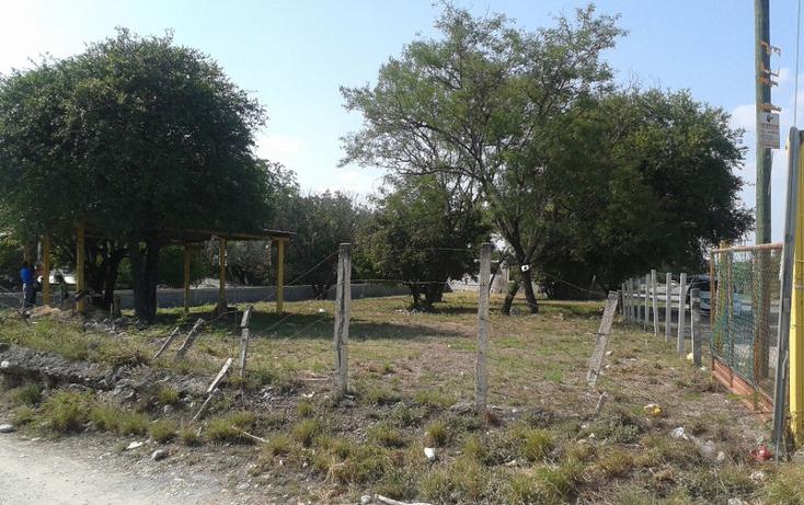 Foto de terreno habitacional en renta en  , calles, montemorelos, nuevo león, 1368955 No. 04