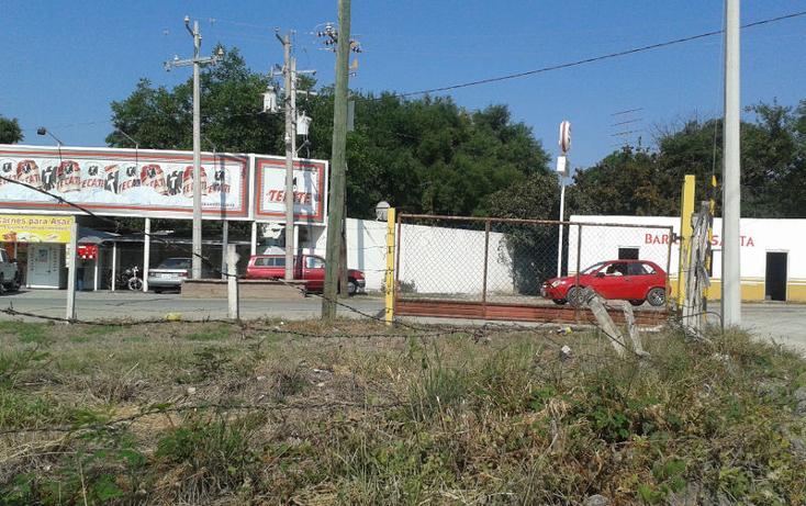 Foto de terreno habitacional en renta en  , calles, montemorelos, nuevo león, 1368955 No. 06