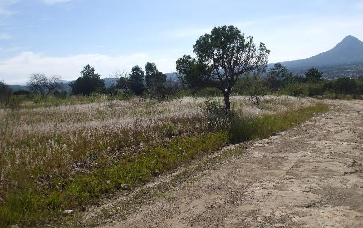 Foto de terreno habitacional en venta en  , santa cruz tlaxcala, santa cruz tlaxcala, tlaxcala, 1713960 No. 03
