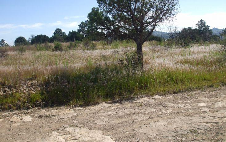 Foto de terreno habitacional en venta en calzada de guadalupe 0, santa cruz tlaxcala, santa cruz tlaxcala, tlaxcala, 1713960 no 05
