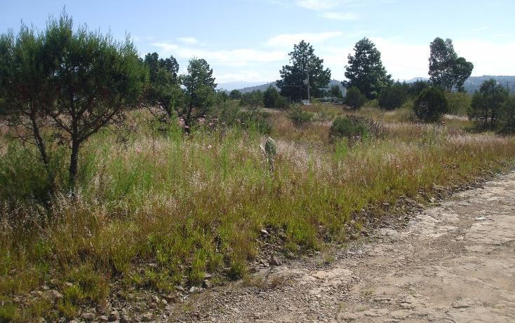 Foto de terreno habitacional en venta en  , santa cruz tlaxcala, santa cruz tlaxcala, tlaxcala, 1713960 No. 06