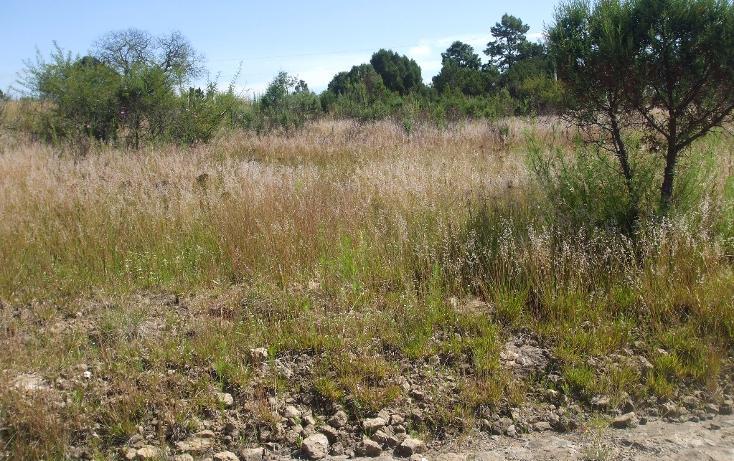 Foto de terreno habitacional en venta en  , santa cruz tlaxcala, santa cruz tlaxcala, tlaxcala, 1713960 No. 08