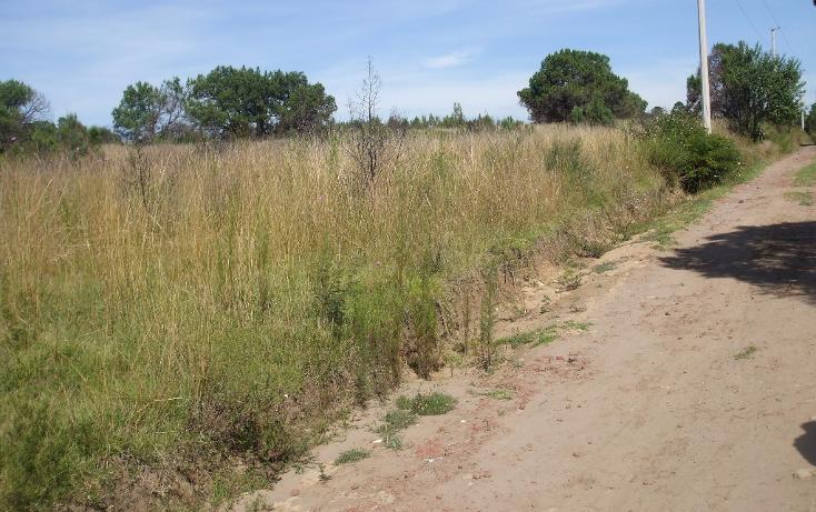 Foto de terreno habitacional en venta en  , santa cruz tlaxcala, santa cruz tlaxcala, tlaxcala, 1713960 No. 12