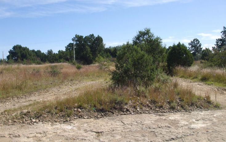 Foto de terreno habitacional en venta en calzada de guadalupe 0, santa cruz tlaxcala, santa cruz tlaxcala, tlaxcala, 1713960 no 16