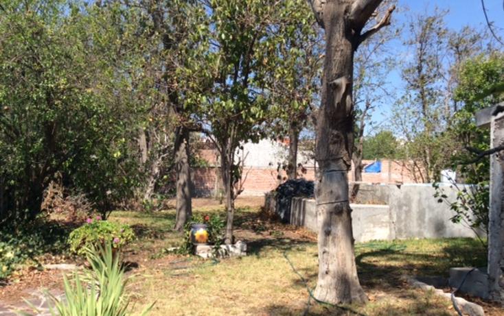 Foto de rancho en venta en calzada de guadalupe 31, santuario, villa de reyes, san luis potosí, 3415537 No. 15