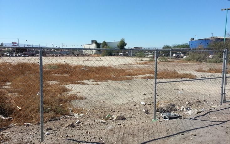 Foto de terreno habitacional en venta en calzada héctor terán terán junto a comandancia de policia , xochimilco, mexicali, baja california, 452908 No. 06