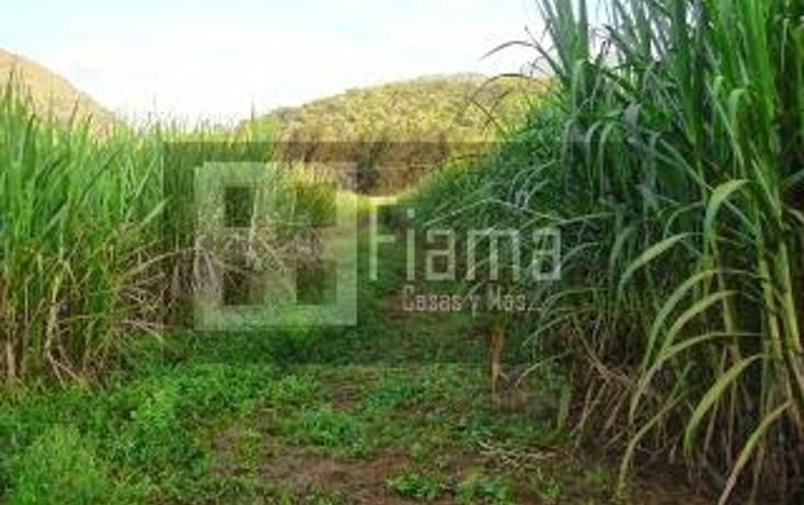 Foto de terreno habitacional en venta en  , camichin de jauja, tepic, nayarit, 1303449 No. 01