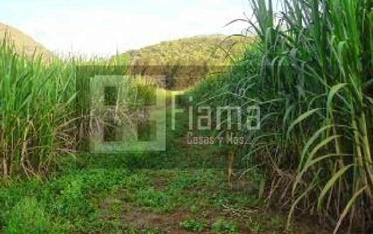 Foto de terreno habitacional en venta en  , camichin de jauja, tepic, nayarit, 1303449 No. 05