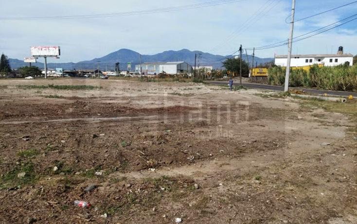 Foto de terreno comercial en renta en  , camichin de jauja, tepic, nayarit, 1311461 No. 06