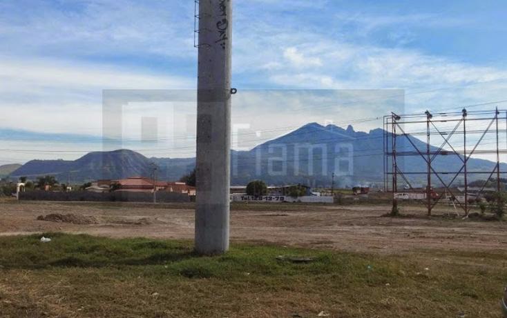 Foto de terreno comercial en renta en  , camichin de jauja, tepic, nayarit, 1311461 No. 10