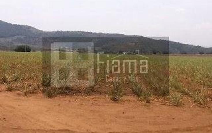 Foto de terreno habitacional en venta en  , camichin de jauja, tepic, nayarit, 1864338 No. 12