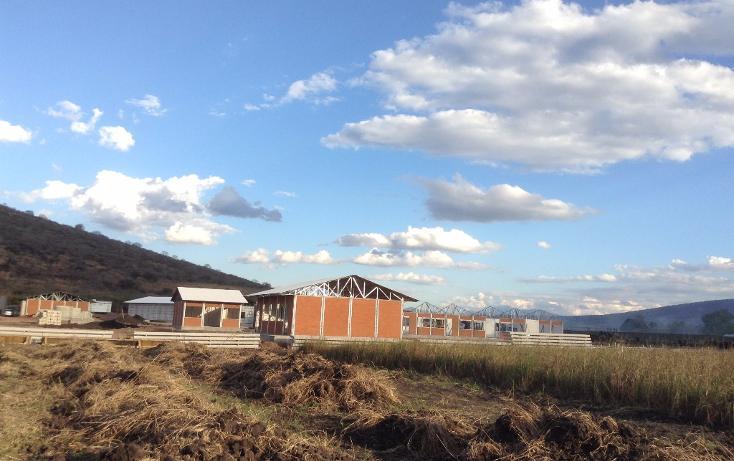 Foto de terreno habitacional en venta en camichines 0, jiquilpan de juárez centro, jiquilpan, michoacán de ocampo, 1719652 no 02