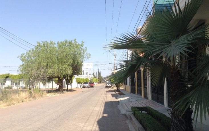 Foto de terreno habitacional en venta en  , jiquilpan de juárez centro, jiquilpan, michoacán de ocampo, 1719652 No. 07