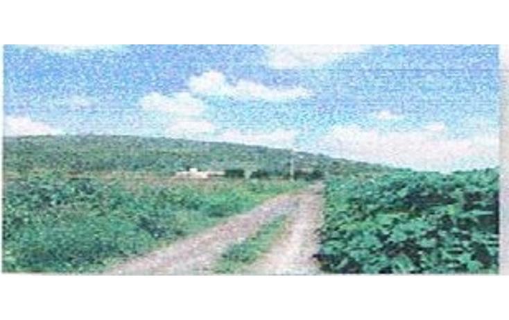 Foto de terreno habitacional en venta en  , jiquilpan de juárez centro, jiquilpan, michoacán de ocampo, 1719652 No. 13