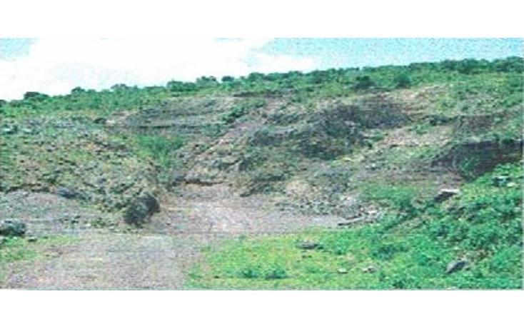 Foto de terreno habitacional en venta en  , jiquilpan de juárez centro, jiquilpan, michoacán de ocampo, 1719652 No. 15