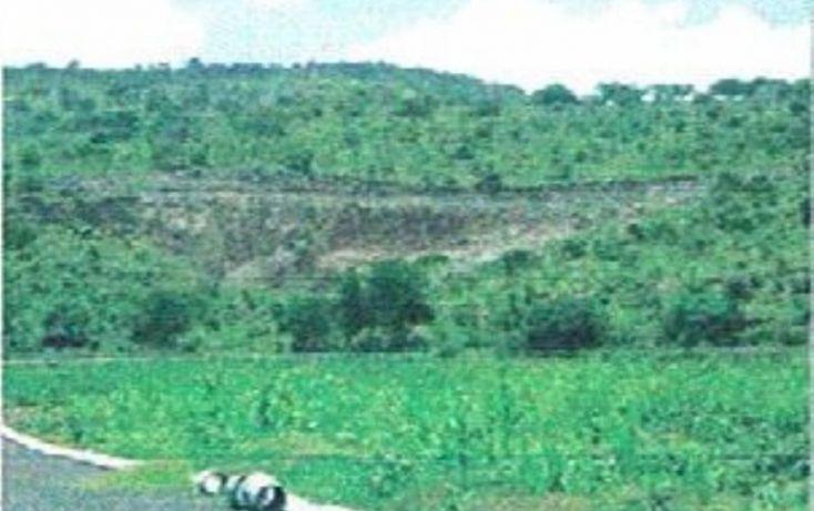 Foto de terreno habitacional en venta en camichines, jiquilpan de juárez centro, jiquilpan, michoacán de ocampo, 1797794 no 06