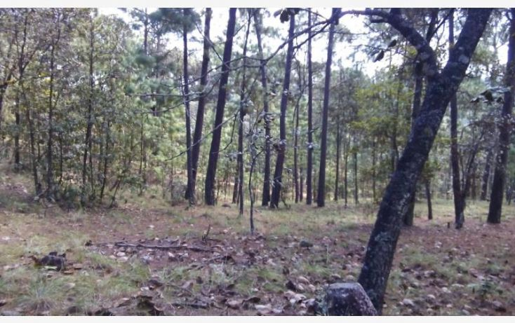Foto de terreno habitacional en venta en camino a cerro gordo, avándaro, valle de bravo, estado de méxico, 1615006 no 05