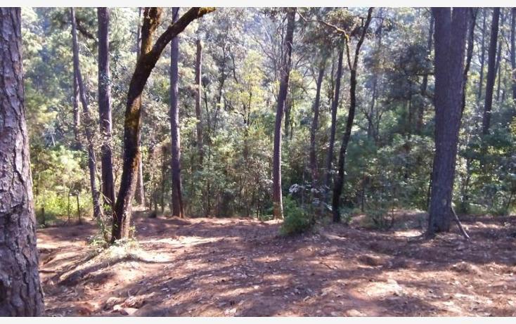 Foto de terreno habitacional en venta en camino a cerro gordo , avándaro, valle de bravo, méxico, 1615006 No. 02