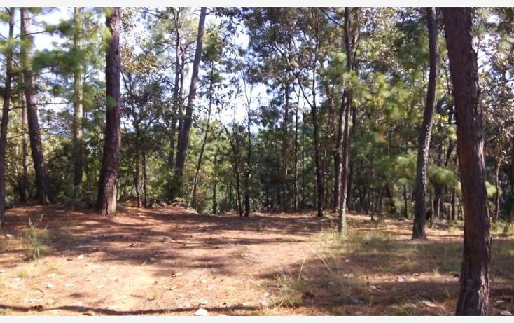 Foto de terreno habitacional en venta en camino a cerro gordo , avándaro, valle de bravo, méxico, 1615006 No. 03
