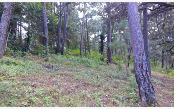 Foto de terreno habitacional en venta en camino a cerro gordo , avándaro, valle de bravo, méxico, 1615006 No. 04