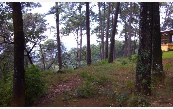 Foto de terreno habitacional en venta en camino a cerro gordo , avándaro, valle de bravo, méxico, 1615006 No. 06