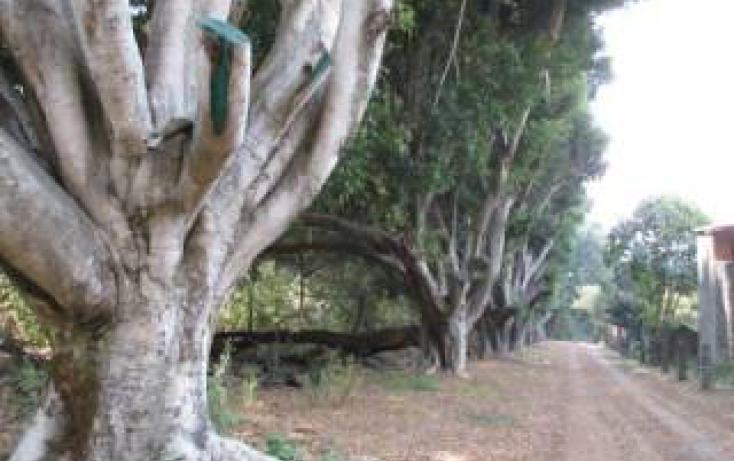 Foto de terreno habitacional en venta en camino a chalma, del bosque, cuernavaca, morelos, 346944 no 04