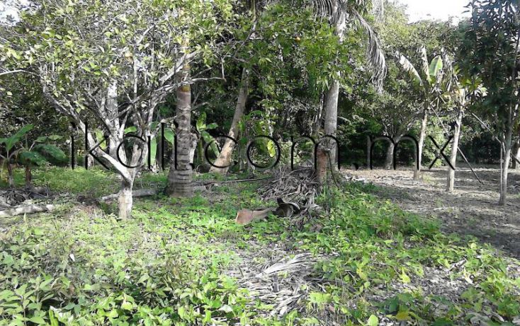 Foto de casa en venta en camino a juana moza, isla de juana moza, tuxpan, veracruz, 1689982 no 06