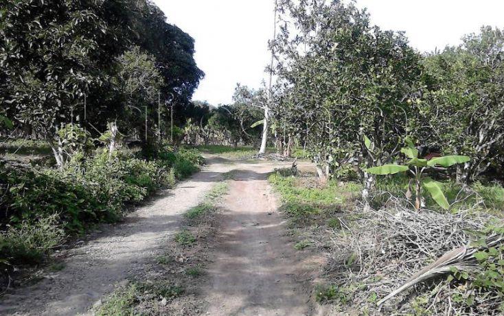 Foto de casa en venta en camino a juana moza, isla de juana moza, tuxpan, veracruz, 1689982 no 09