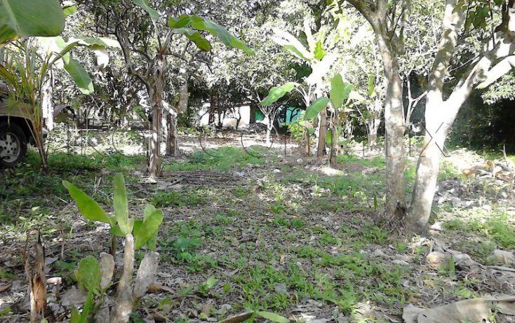 Foto de casa en venta en camino a juana moza, isla de juana moza, tuxpan, veracruz, 1689982 no 10